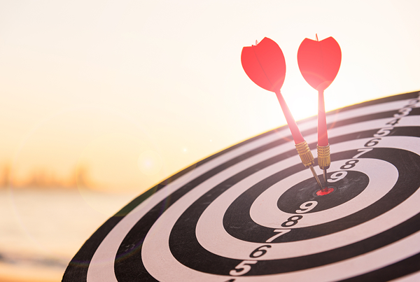 bulls-eye to hit your targeted goals