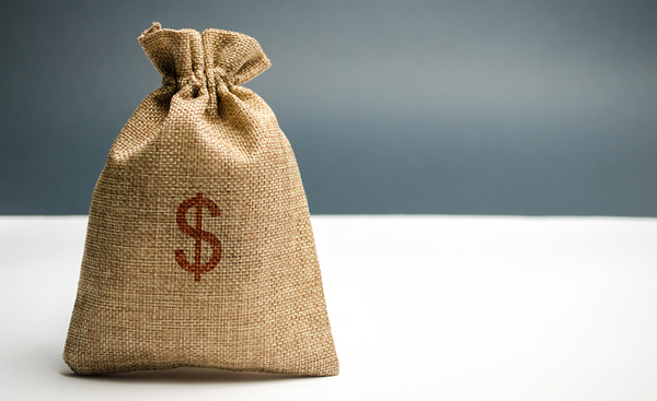 canvas bag with a dollar sign printed on it