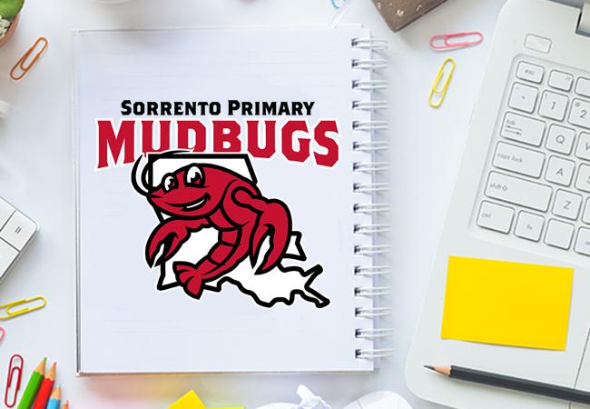 Sorrento Primary Mudbugs