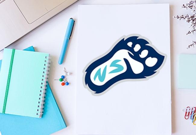 School Logo Design: New Summit Charter Academy