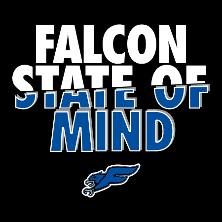 Falcon State of Mind