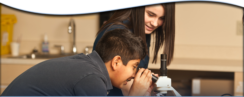 Students Looking in Microscope