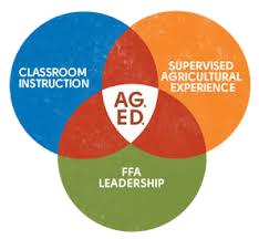 FFA AG ED module diagram
