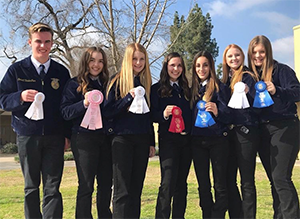 seven FFA students with ribbons