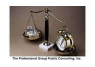 The Professional Group Public Consulting