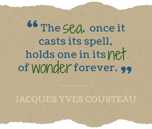 The sea, once it casts its spell, holds one in its net of wonder forever. -Jacques Yves Cousteau