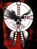 St Stephens Indian logo