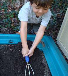 Male student participates in a gardening activity