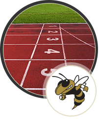 Track and hornet