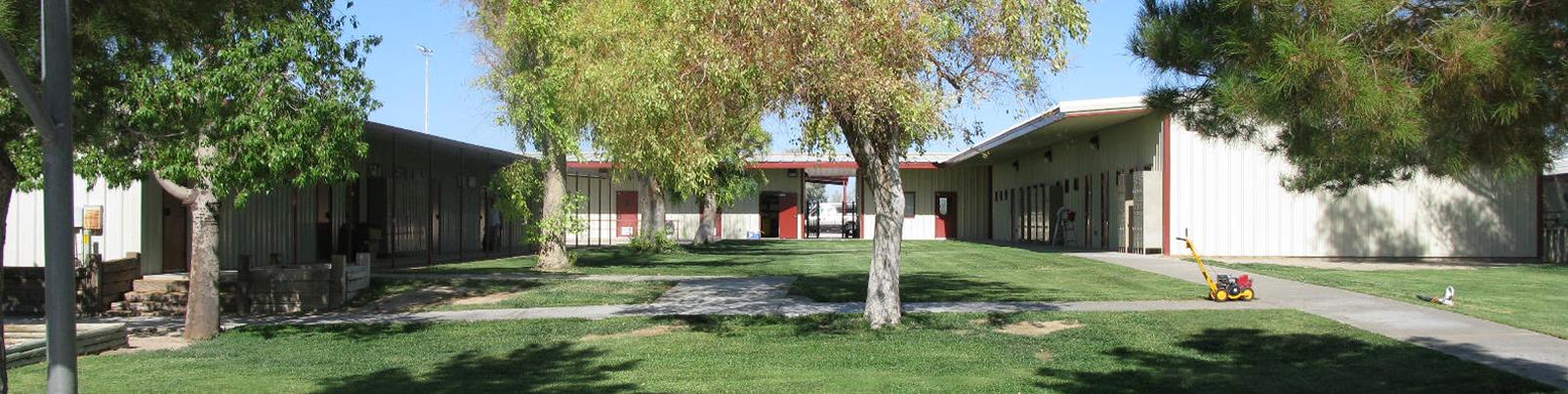 3-Salome Elementary