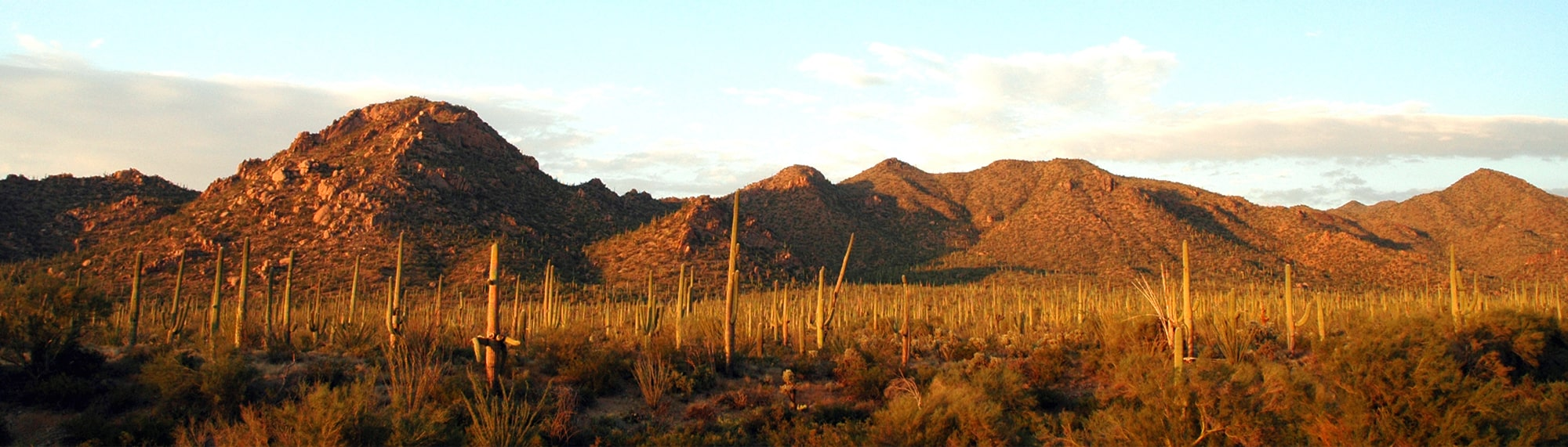 Arizona Mountains at Sunset
