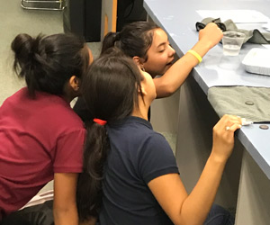 Three students doing a science activity together