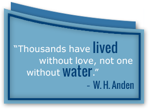W.H. Anden quote