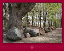 Serene zen garden