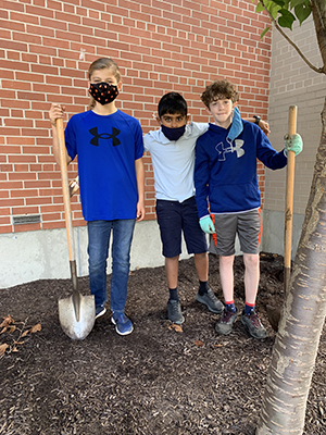 Three happy boys in sixth grade outside planting bulbs