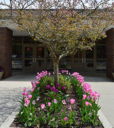 Branchville school building