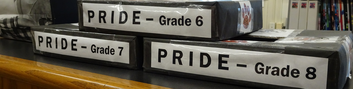 Grade 6, Grade 7 and Grade 8 PRIDE boxes