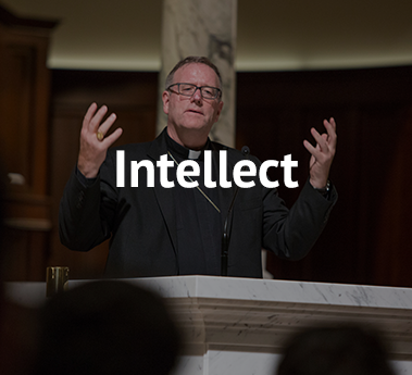 Intellect