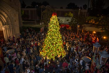 Annual Christmas Tree Lighting