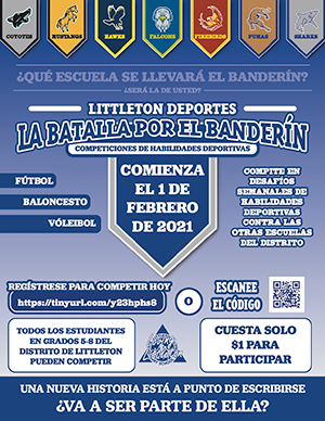 Battle of the Banner Spanish flyer