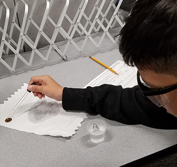 Male student works on a science project using a penny and water