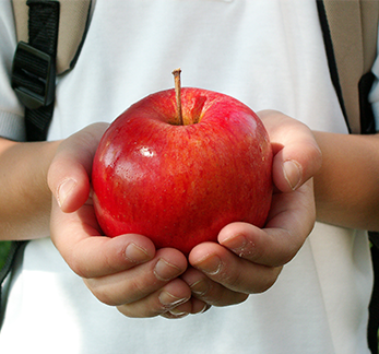 Student wearing a backpack holds an apple in their hands