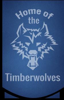 School Logo Banner