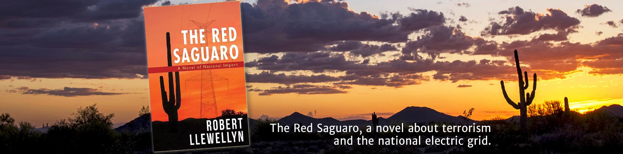 The Red Saguaro, a novel about terrorism and the national electric grid