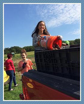 Girls harvesting vegetables