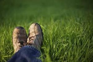 Legs posing in grass