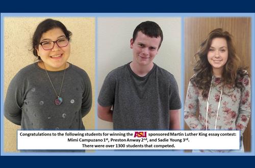Three student essay contest winners