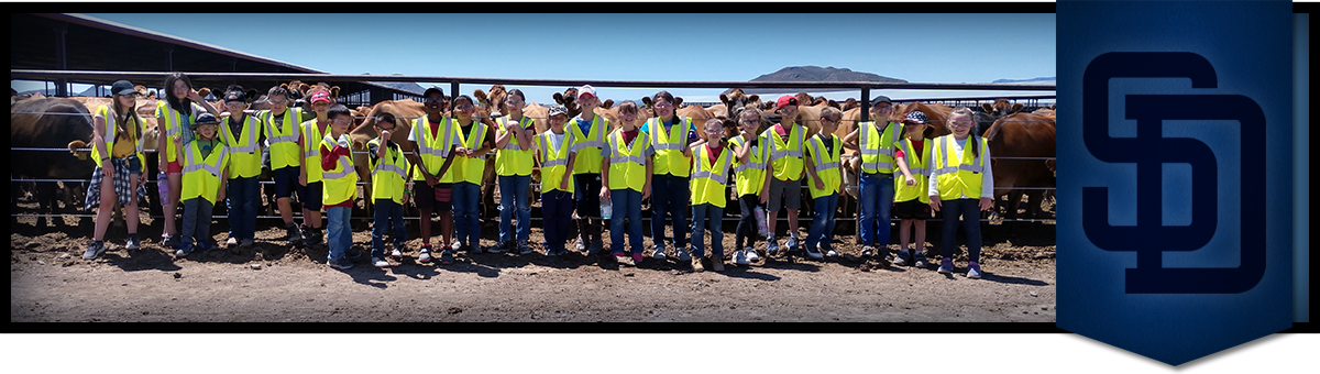 Students wearing safety vests pose outside with cows