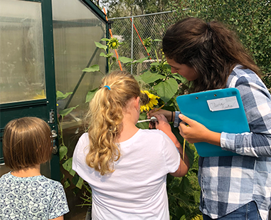 Teacher and two students study sunflowers together