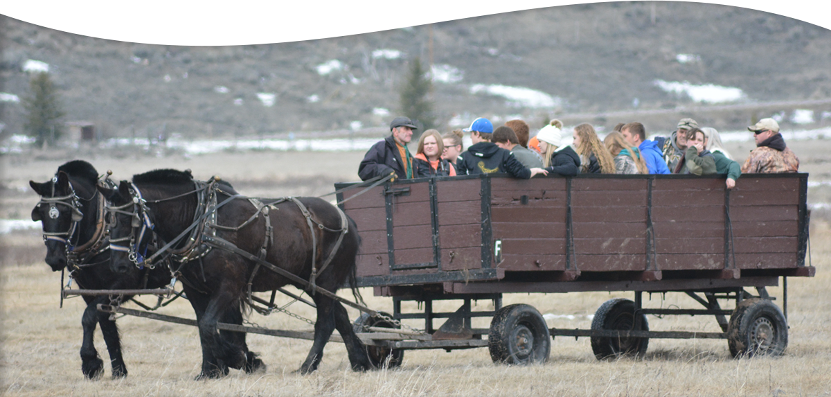 students in carriage