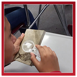 Student uses a magnifying glass on a fossil