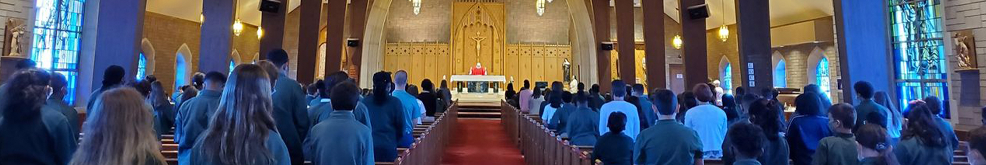 Classroom decorated with dog-themed desks with protection barriers