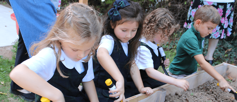 Students participate in a gardening activity