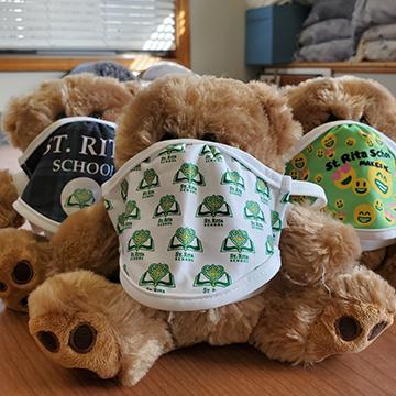 Teddy bears wearing masks