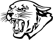 St. Kieran mascot