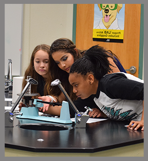 Three female students look at a science project