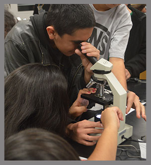 Students look into a microscope
