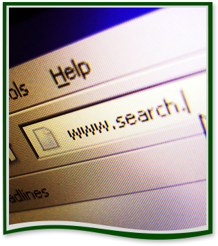 Internet browser search bar with the text www.search.