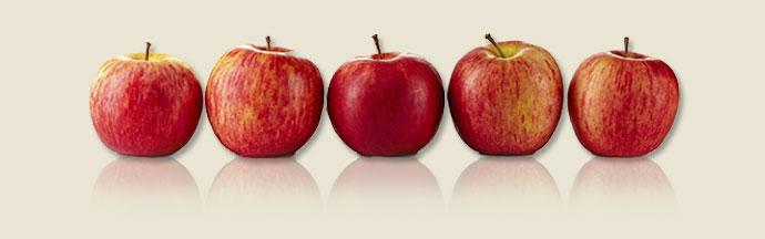 Row of five apples