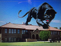 Cartoon panther stands on top of building