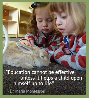 Education cannot be effective unless it helps a child open himself up to life. - Dr. Maria Montessori