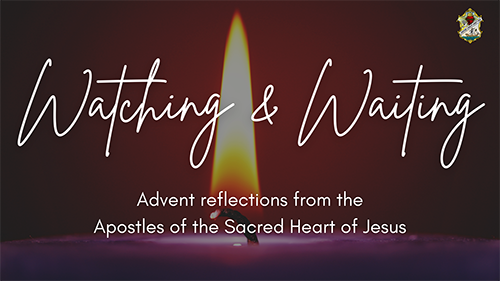 Watching and Waiting- Advent reflections from the Apostles of the Sacred Heart of Jesus