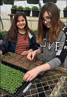 Two female students work on a planting project outside