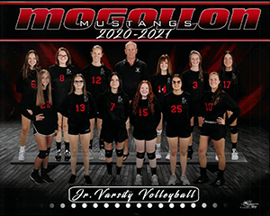 Junior Varsity Volleyball Team