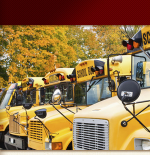 School buses lined up outside