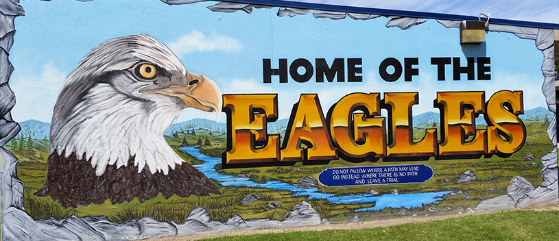 Home of the Eagles banner